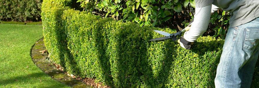 Travaux et aménagement de jardin